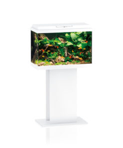 Juwel primo 70 led aquarium-0