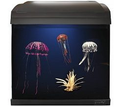Superfish Aqua 45 Jelly Fish