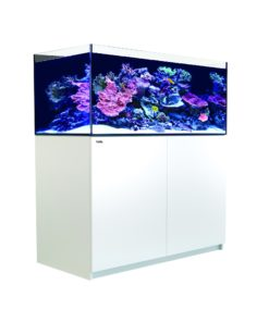 Red Sea reefer 425 XL-0