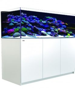 Red Sea reefer 525 XL-0