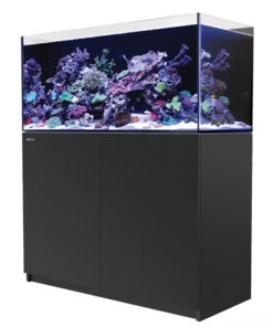 Red Sea Reefer 350 zwart