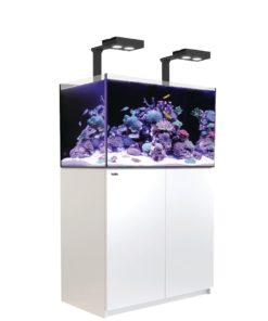 Red Sea Reefer 250 deluxe wit