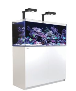 Red Sea Reefer 350 deluxe wit