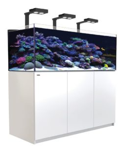 red sea reefer 525 xl deluxe wit