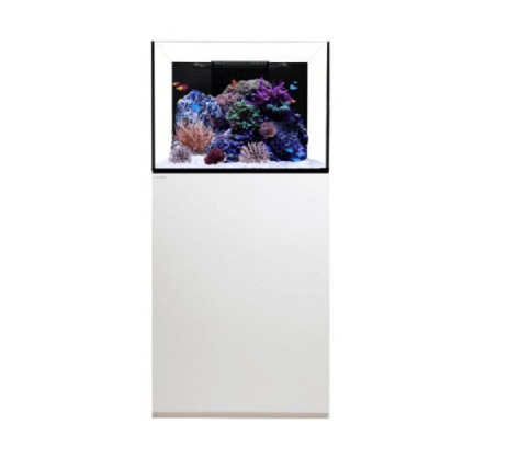 waterbox 70 wit