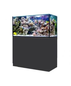 Red Sea reefer 300 XL zwart